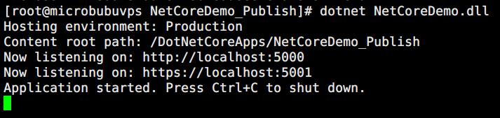启动.NetCore应用